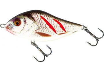 Salmo Slider Sinking 12cm - Wounded Real Grey Shiner